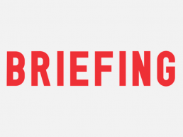 logo briefing